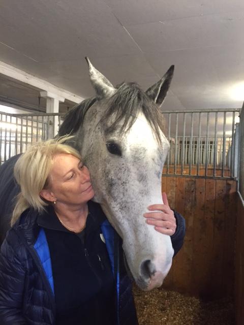 hästterapi